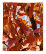 Fall Color 2 Fleece Blanket