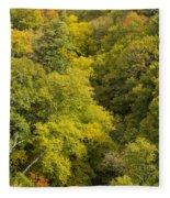 Fall Color Hills Mi 3 Fleece Blanket
