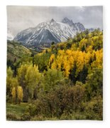 Fall Color In The Rockies Near Ouray Dsc07913 Fleece Blanket