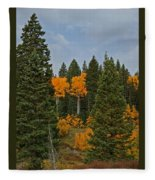 Fall Colors 2 Greeting Card Fleece Blanket
