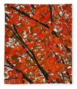 Fall Colors 2014-10 Fleece Blanket