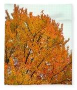 Fall Colors 2014-11 Fleece Blanket