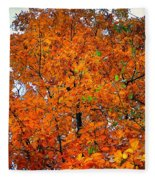 Fall Colors 2014 - 14 Fleece Blanket