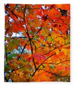 Fall Colors 2014-4 Fleece Blanket