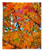 Fall Colors 2014-5 Fleece Blanket