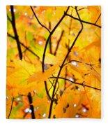 Fall Colors 2014-7 Fleece Blanket