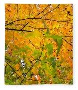 Fall Colors 2014-8 Fleece Blanket