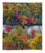 Fall Colors Along Tanasee Road Fleece Blanket