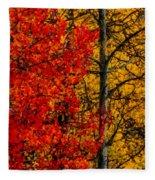 Fall Colors Dp Fleece Blanket