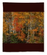 Fall Colors Greeting Card Fleece Blanket