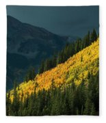 Fall Colors In Aspen Colorado Fleece Blanket