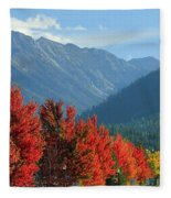 Fall Colors In Joseph Or Fleece Blanket