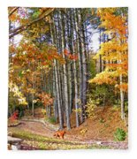 Fall Driveway And Coco The Dog Fleece Blanket