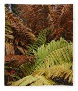 Fall Ferns Acadia National Park Img 6355 Fleece Blanket