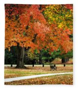 Fall In The Park Fleece Blanket