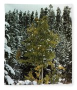 Fall Into Winter Fleece Blanket