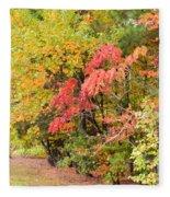 Fall Landscape 3 Fleece Blanket