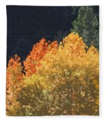 Fall Leave On The East Verde River Fleece Blanket