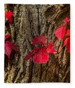 Fall Leaves Against Tree Trunk Fleece Blanket