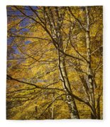 Fall Leaves And Trees In West Michigan No171 Fleece Blanket