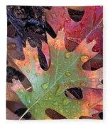 Fall Leaves I V Fleece Blanket