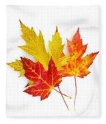Fall Maple Leaves On White Fleece Blanket