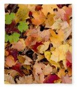 Fall Maples Fleece Blanket