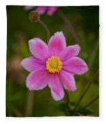 Fall Pink Daisy Fleece Blanket