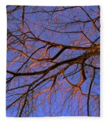 Fall Reflections By Diana Sainz Fleece Blanket