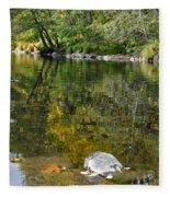 Fall Series 33 Fleece Blanket