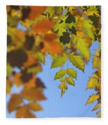 Fall Time Fleece Blanket