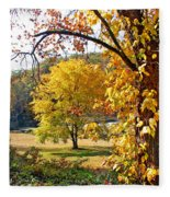 Fall Trees 4 Of Wnc Fleece Blanket