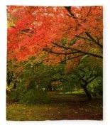 Fall Trees Fleece Blanket