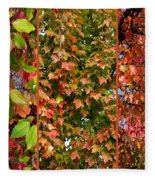 Fall Trio Collage Fleece Blanket