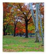 Fall Walk Fleece Blanket