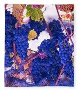 Fall Wine Grapes Fleece Blanket