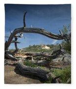 Fallen Dead Torrey Pine Trunk At Torrey Pines State Natural Reserve Fleece Blanket