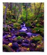 Fallen Leaves On The Rocks Fleece Blanket