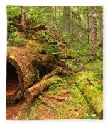 Fallen Rainforest Giant Fleece Blanket