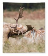 Fallow Deer - Amazing Antlers Fleece Blanket