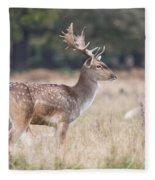 Fallow Deer Buck On Guard  Fleece Blanket
