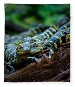 Baby Alligator Selfie Fleece Blanket