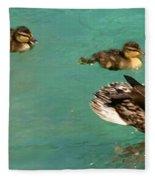 Family Flotilla 2 Fleece Blanket