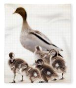 Family Of Ducks Fleece Blanket
