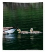 Family Swim Fleece Blanket