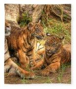Tiger Family Fleece Blanket