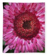Fancy Pink Daisy Fleece Blanket