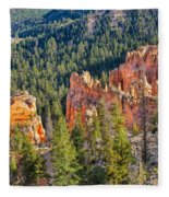 Farview Point Overlook Fleece Blanket