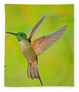 Fawn-breasted Brilliant Hummingbird Fleece Blanket