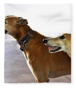 Fawn Greyhound Dogs Profile Fleece Blanket